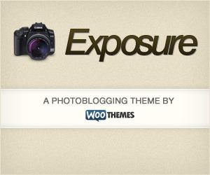 Exposure WP template