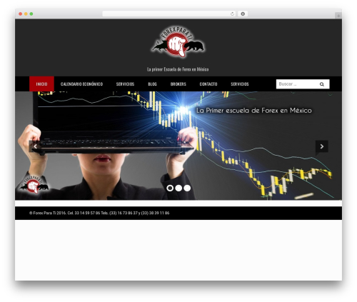 Royal free WordPress theme - forexparati.com