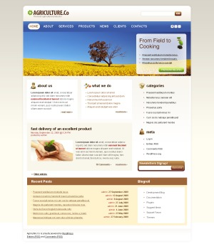 WordPress Theme 954 template WordPress
