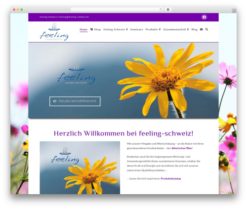 X WordPress website template - feeling-schweiz.ch/web