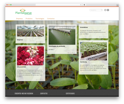 Remal WordPress theme - plantalgarve.com