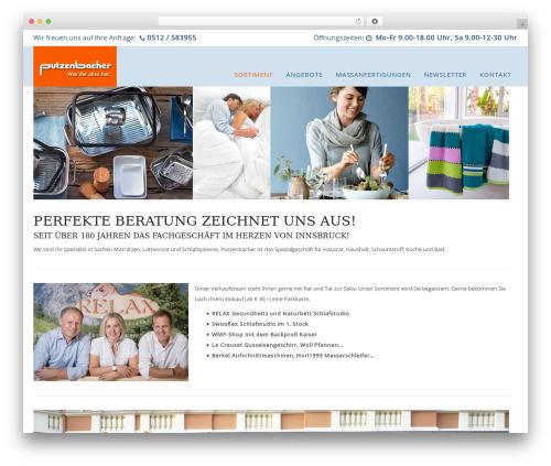 WP Omnia WP template - putzenbacher.at
