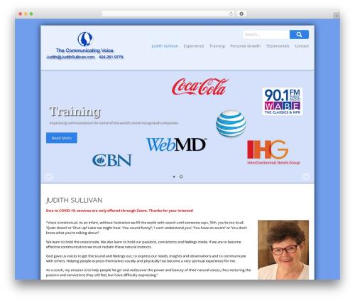 SKT Biz newspaper WordPress theme - judithsullivan.com