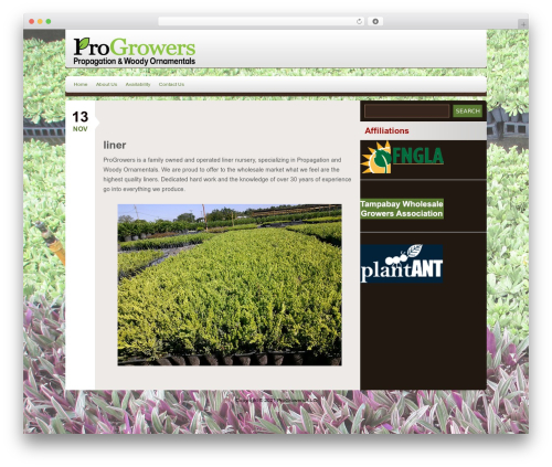 Rhea WordPress theme - progrowersllc.com