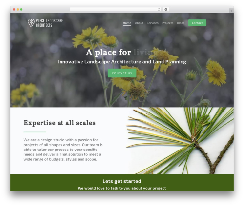Salient theme WordPress - placelas.com