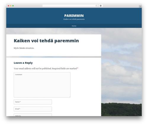 Big Brother WordPress theme - paremmin.fi