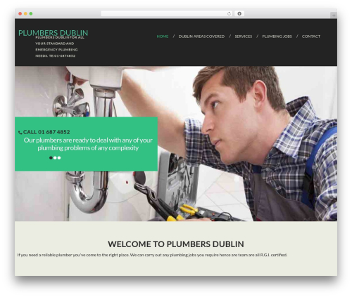 cherry WordPress theme - plumbers-dublin.co