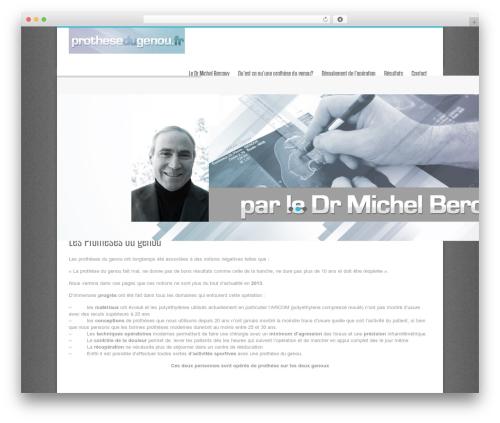 Nine WordPress theme design - prothesedugenou.fr