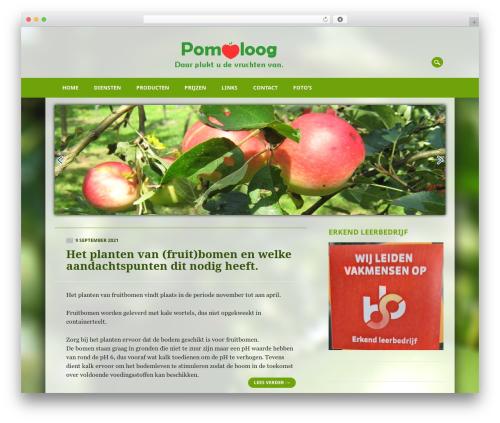 Free WordPress Simple Slideshow Manager plugin - pomoloog.com