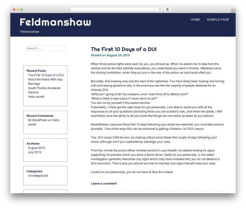 eyesite best free WordPress theme - feldmanshaw.com