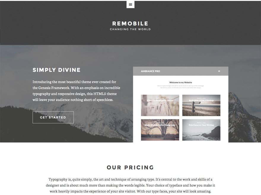 Remobile Pro top WordPress theme