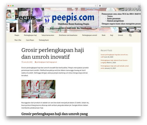 Twenty Thirteen free WP theme - peepis.com