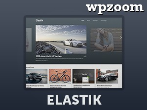 WP theme Elastik (Shared on www.MafiaShare.net)