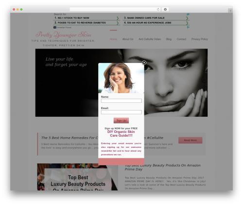 Free WordPress Flare plugin - prettyyoungerskin.com