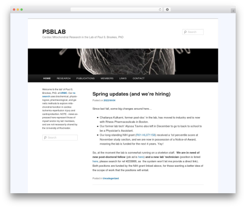 Twenty Eleven template WordPress free - psblab.org