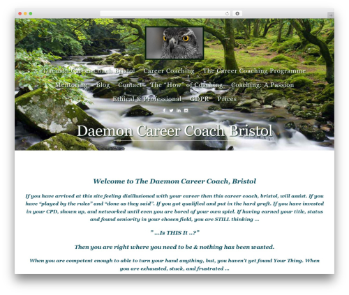 Story WordPress theme design - daemoncareercoach.co.uk
