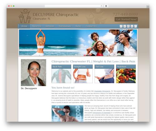 Free WordPress WP PageNavi Style plugin - decuyperechiropractorclearwater.com