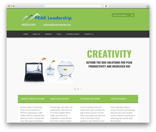 Twins WP template - peakleadership.com