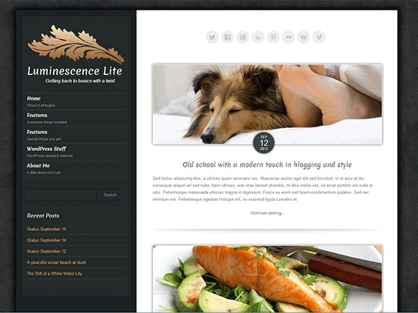 Best WordPress template Luminescence LiteV2
