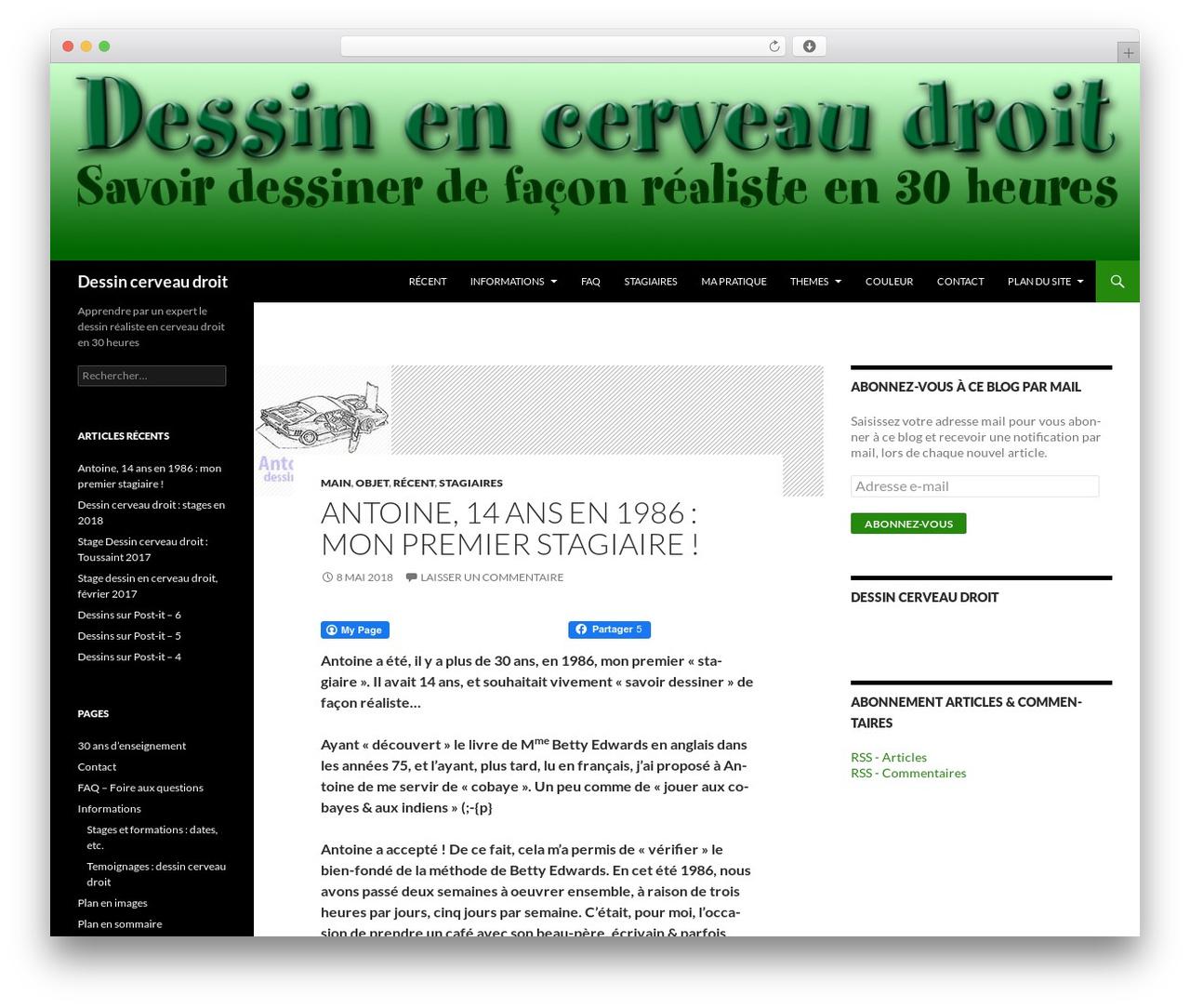 Twenty Fourteen best WordPress theme - dessin-cerveau-droit.fr