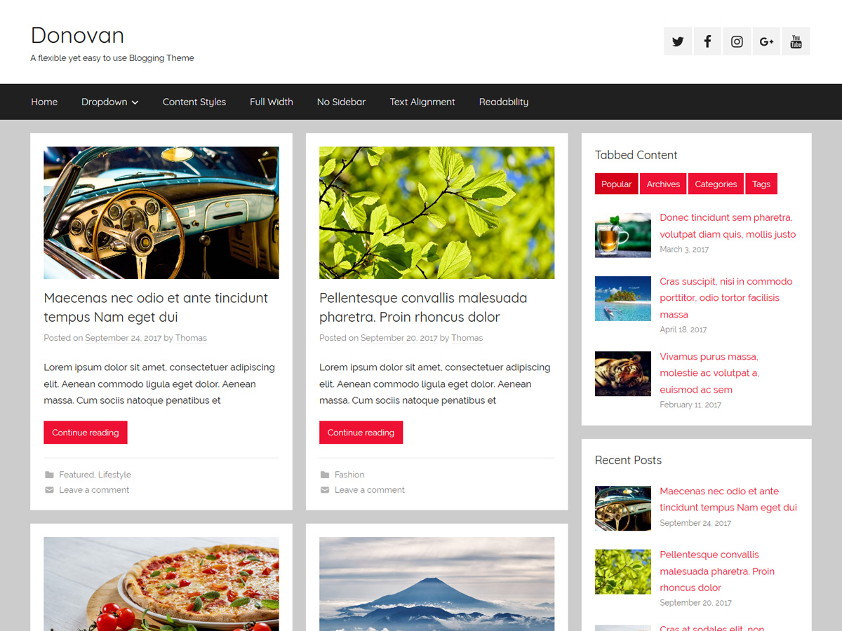 Donovan WordPress blog theme