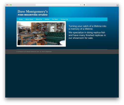 Free WordPress Easy Gallery plugin - davesfishmount.com