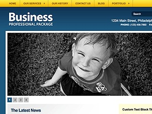 Business Professional Package business WordPress theme