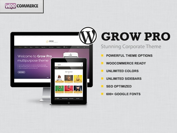 Grow Pro WordPress template for business