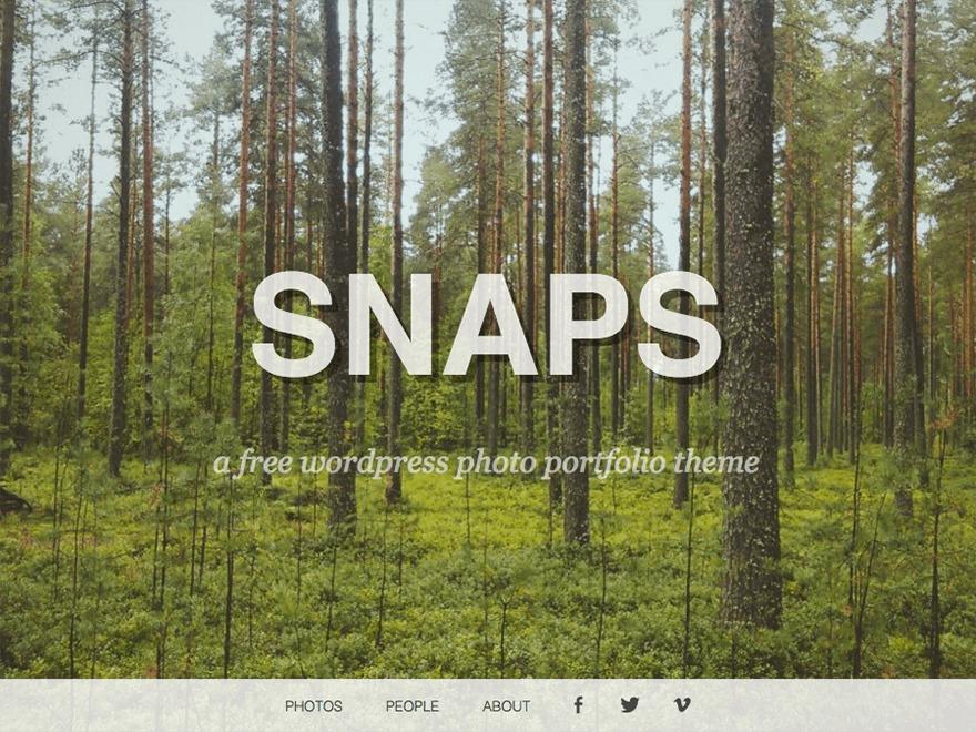 Snaps WordPress theme image
