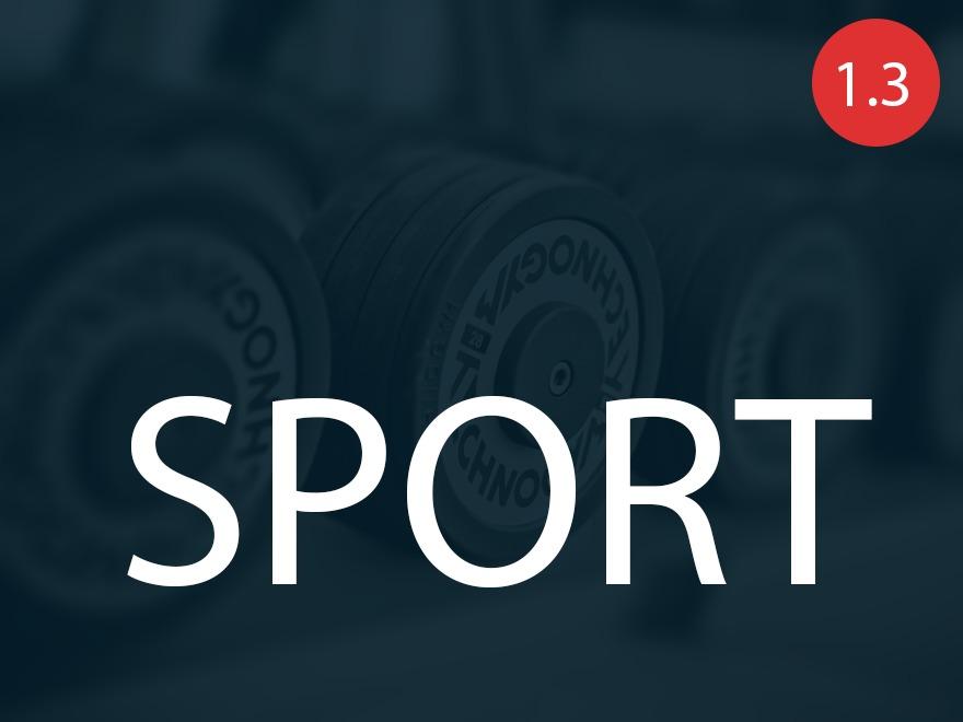 Sport - child theme WordPress theme design