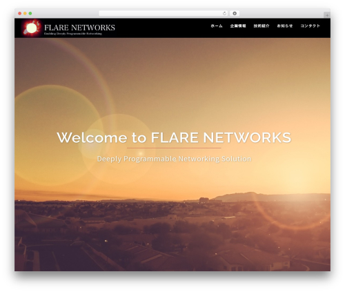 Sydney theme WordPress - flare-networks.com