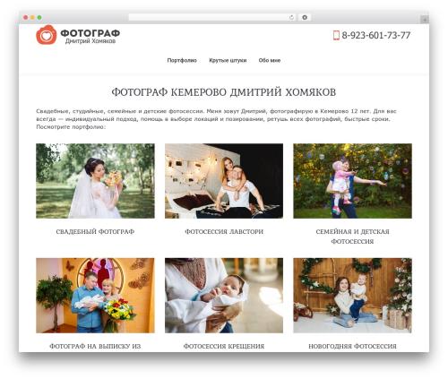 WordPress dt-the7-core plugin - fotexx.ru