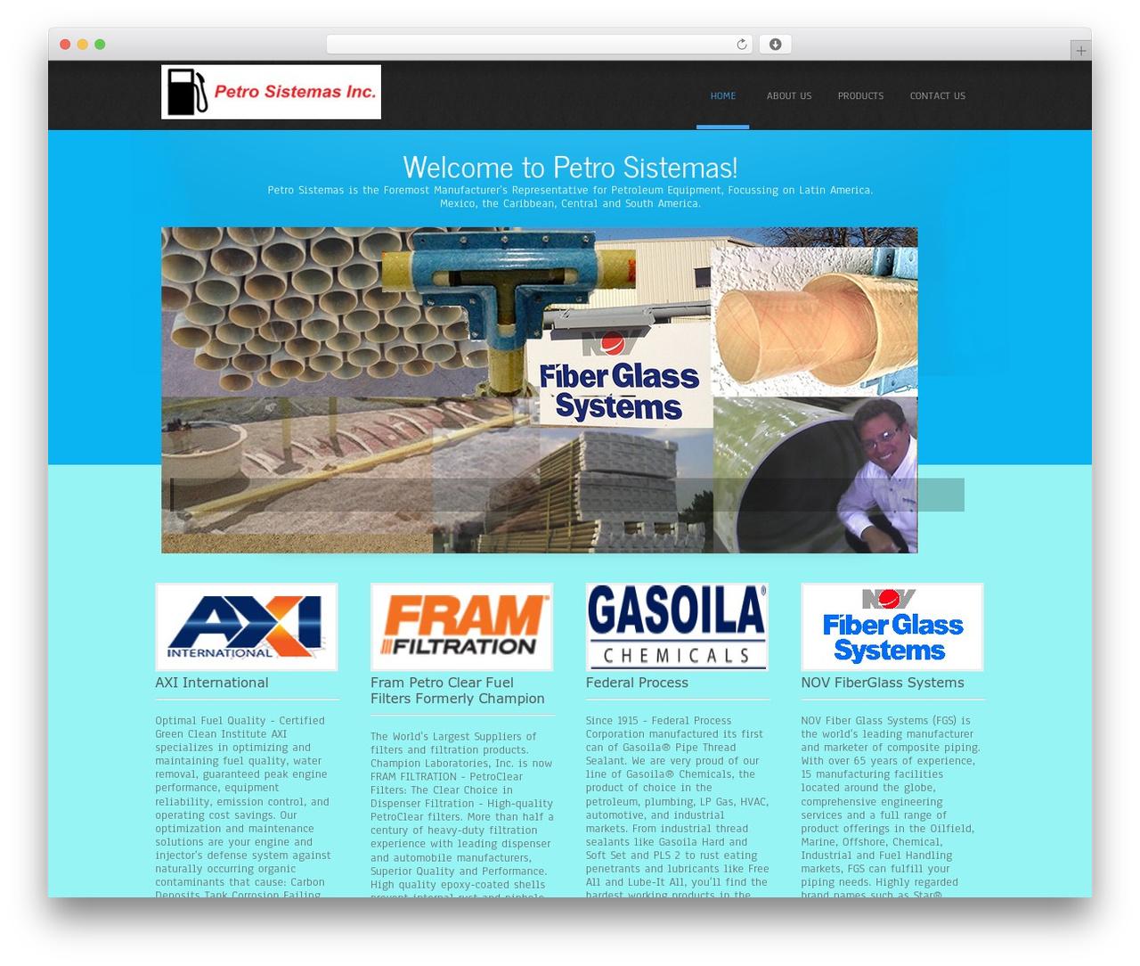 Simplicity Lite WordPress page template - petrosistemas.net