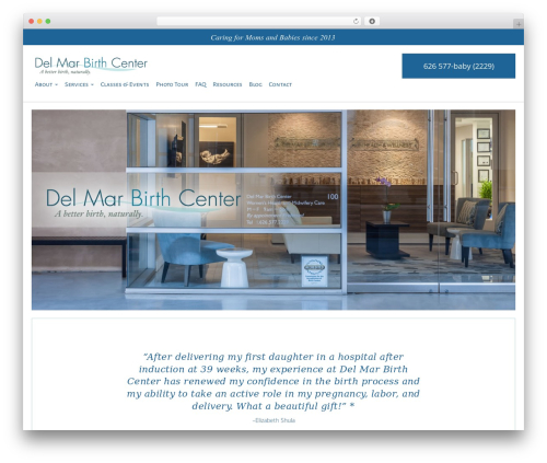 DMS best WordPress theme - delmarbirthcenter.com