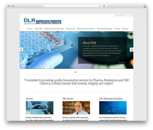 Chameleon WordPress theme - dlrconsulting.net