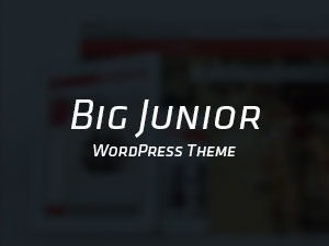 Best WordPress theme Big Junior