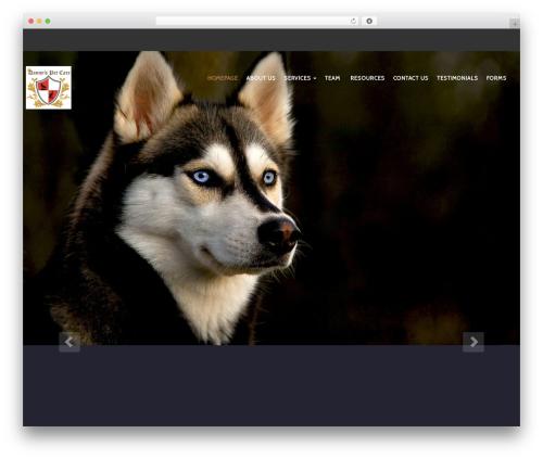 PetCare WordPress website template - dannyspetcare.com