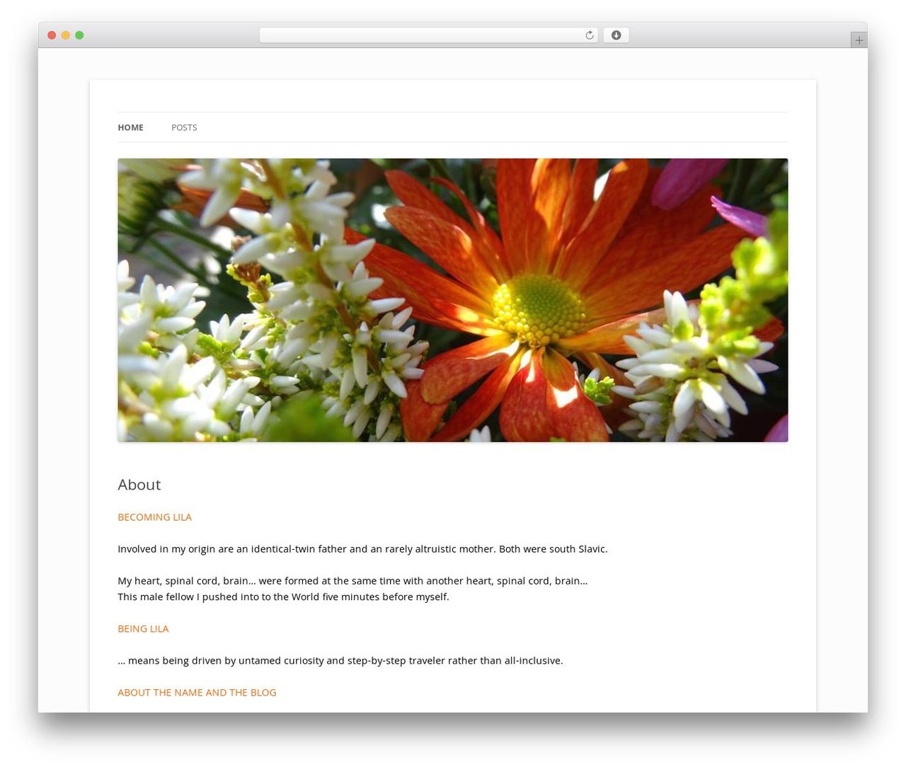 WordPress theme Twenty Twelve - dancinglila.com