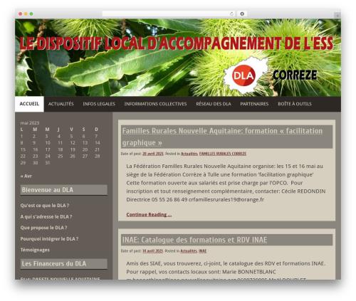 WordPress theme Blog Fever - dlacorreze.org
