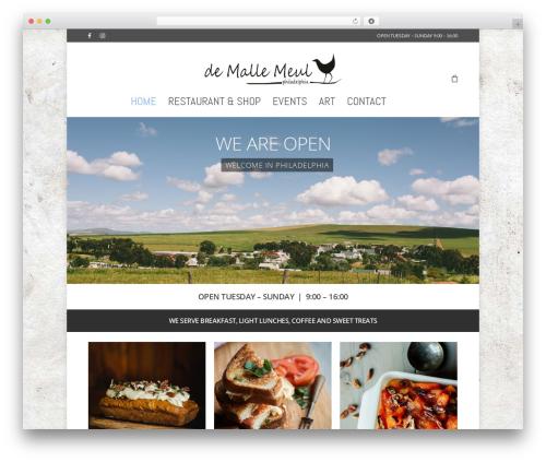 Salient WordPress template for photographers - demallemeul.co.za