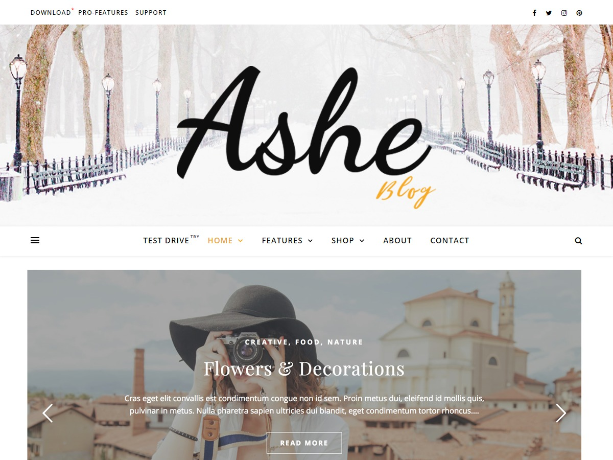Ashe WordPress theme image