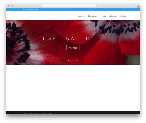 DI Basis 2.7.3 WordPress template - feydo.de