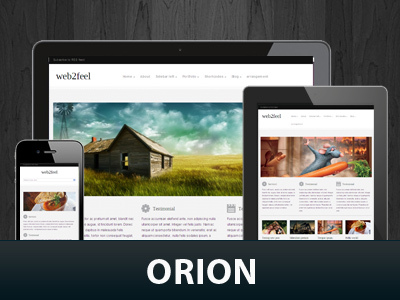 Orion best WordPress template