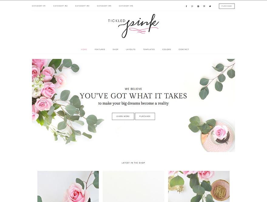 Pink Theme WordPress ecommerce template