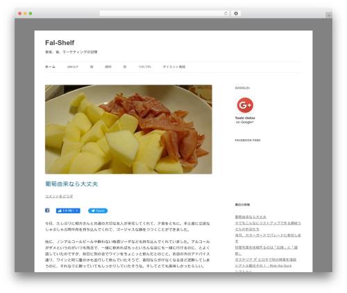 Free WordPress googleCards plugin - falcon-space.net
