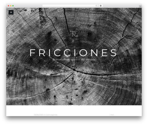 Typer WordPress theme - fricciones.com