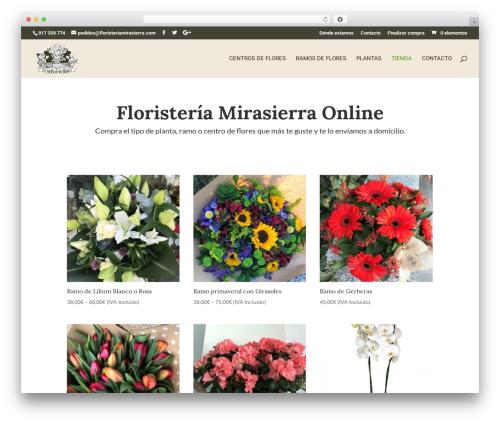 WordPress theme Divi - floristeriamirasierra.com