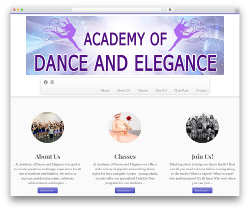 Customizr best free WordPress theme - danceandelegance.com