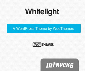 Intrycks Pallet Racking WordPress theme