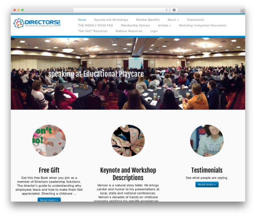 WordPress theme Customizr - directorsleadershipsolutions.com